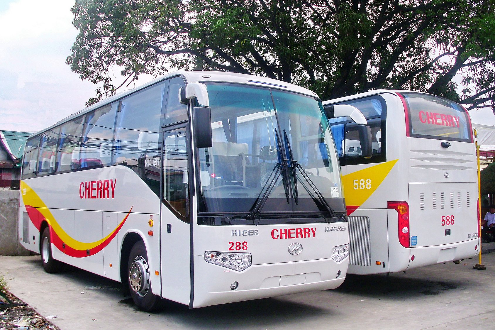 Palawan Bus Tickets, Palawan Bus Service, Bus Puerto Princesa El Nido